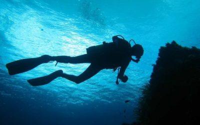 La plongée sous marine : conseils , contre-indications et risques sur votre audition.